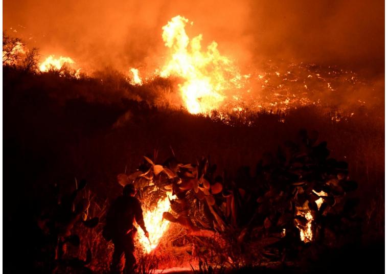 California, stato di emergenza per gli incendi: 200milaevacuati