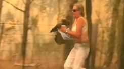 watch_shocking_footage_shows_woman_braving_brushfire_to_save_injured_koala_640_ori_crop_master__0x0_640x360