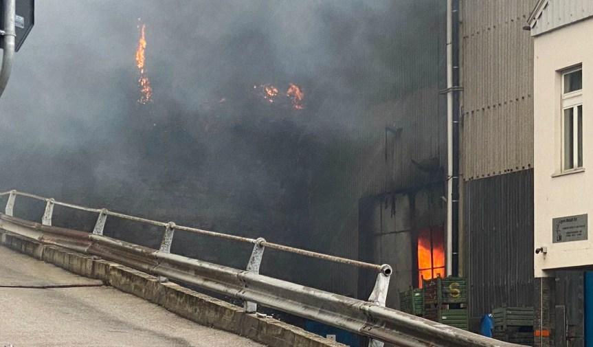 Esplosione in fabbrica a Voltri, le fiamme attaccano anche ilbosco